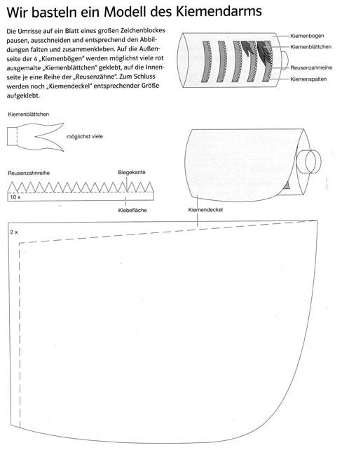 bastelanleitung. Black Bedroom Furniture Sets. Home Design Ideas