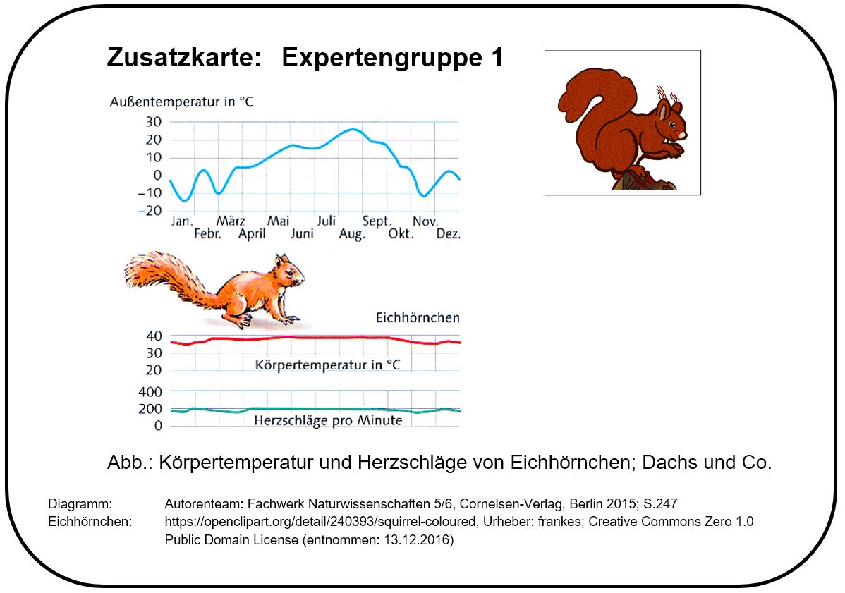 Ausgezeichnet Regenwurm Anatomie Diagramm Galerie - Menschliche ...